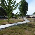 School grounds and walkway